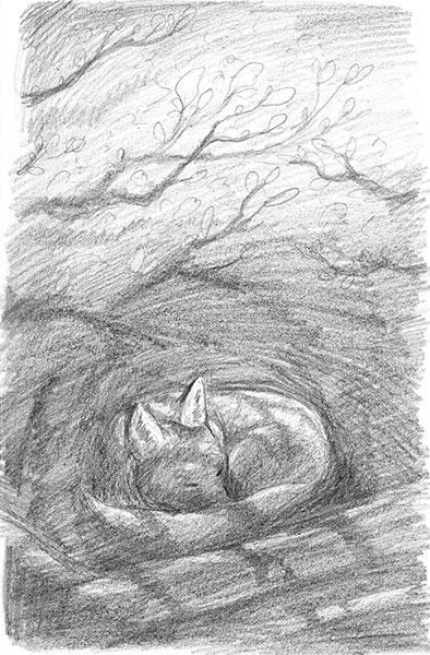 Forest Sketch 1